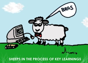 Sheeps in the process of Key Learnings. N.Hayter 2010.