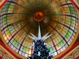 Photos of Christmas Decorations: From the Sydney CBD in Australia