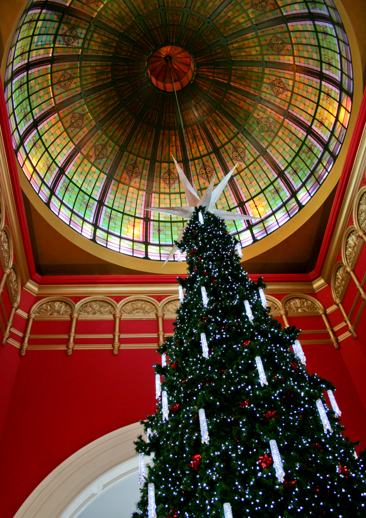 queen victoria building qvb christmas tree 2010 nhayter 2010 - Queen Christmas Decorations