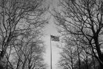 American Flag Liberty Island NYC. N.Hayter 2012