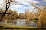 Central Park NYC. N.Hayter 2012