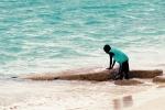 Water Boy Nassau Bahamas. N.Hayter 2012